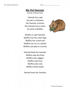 Reading Comprehension Worksheet - My Pet Hamster