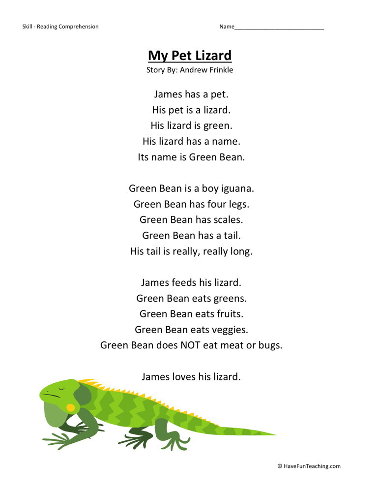 Reading Comprehension Worksheet - My Pet Lizard