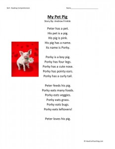 Reading Comprehension Worksheet - My Pet Pig
