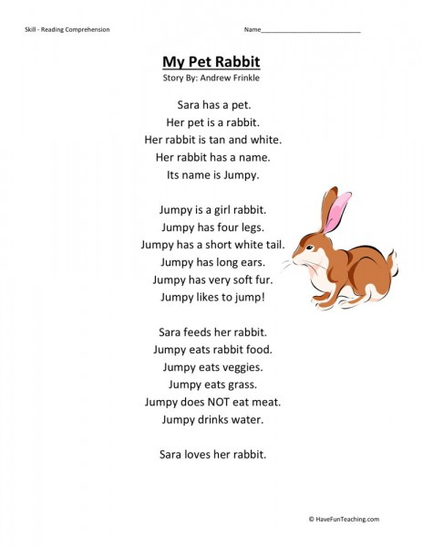 Reading Comprehension Worksheet My Pet Rabbit