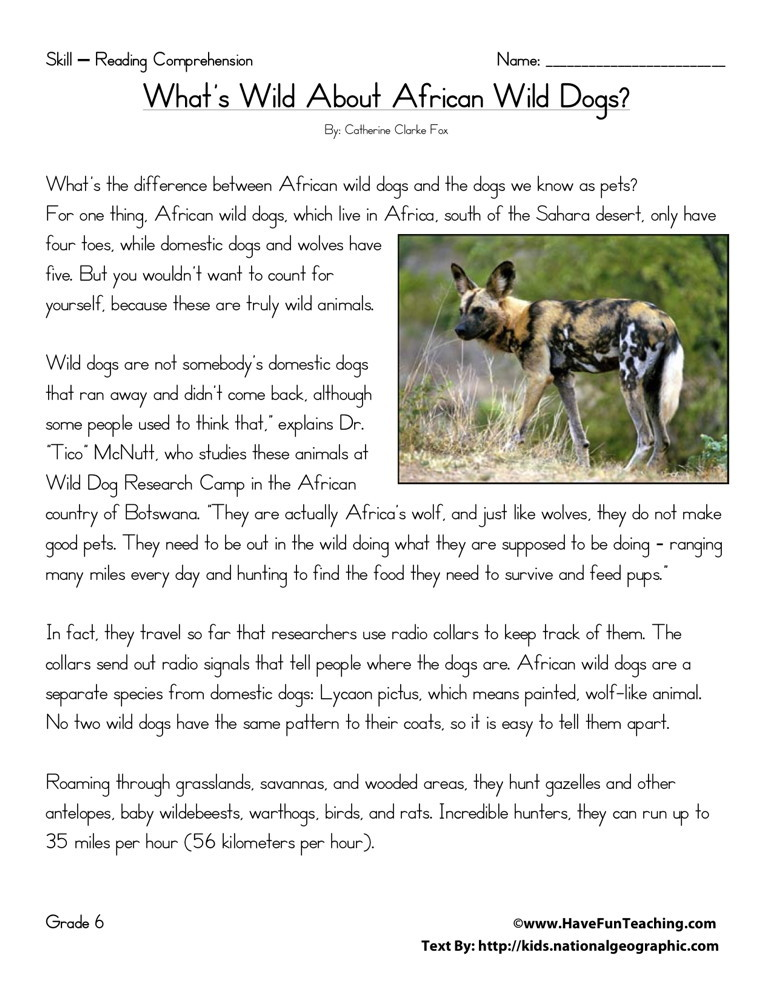 Reading Comprehension Worksheet What Wild About African
