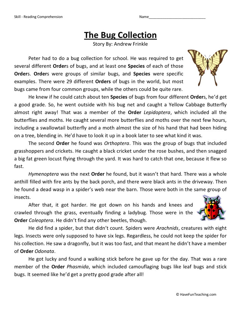 Reading Comprehension Worksheet - The Bug Collection