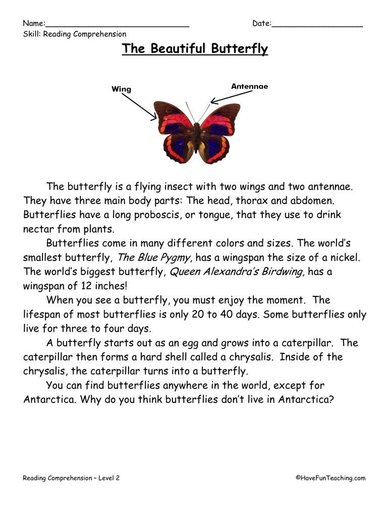 Reading Comprehension Worksheet - The Beautiful Butterfly