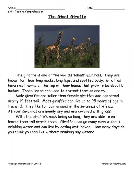 Reading Comprehension Worksheet - The Giant Giraffe