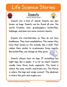 Printables Science Reading Comprehension Worksheets science reading comprehension worksheets download insects