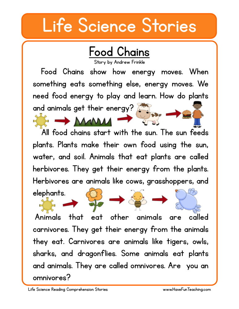 reading comprehension worksheet food chains. Black Bedroom Furniture Sets. Home Design Ideas