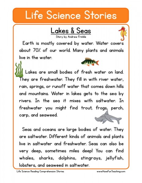 reading comprehension worksheet lakes seas. Black Bedroom Furniture Sets. Home Design Ideas