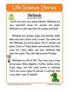 Printables Science Comprehension Worksheets science reading comprehension worksheets wetlands