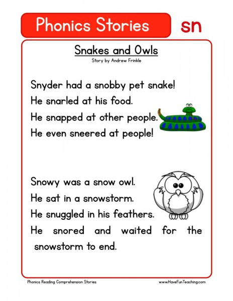 Reading Comprehension Worksheet - Snakes and Owls