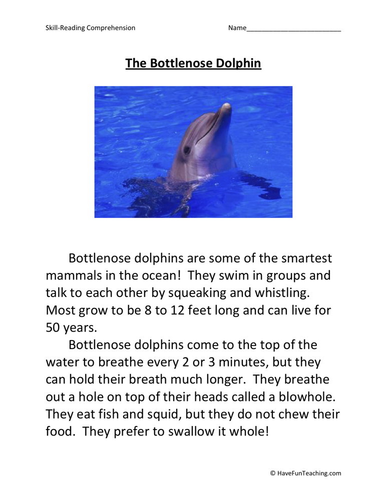 Reading Comprehension Worksheet - The Bottlenose Dolphin
